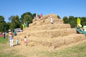Landbouwdagen (339)_large